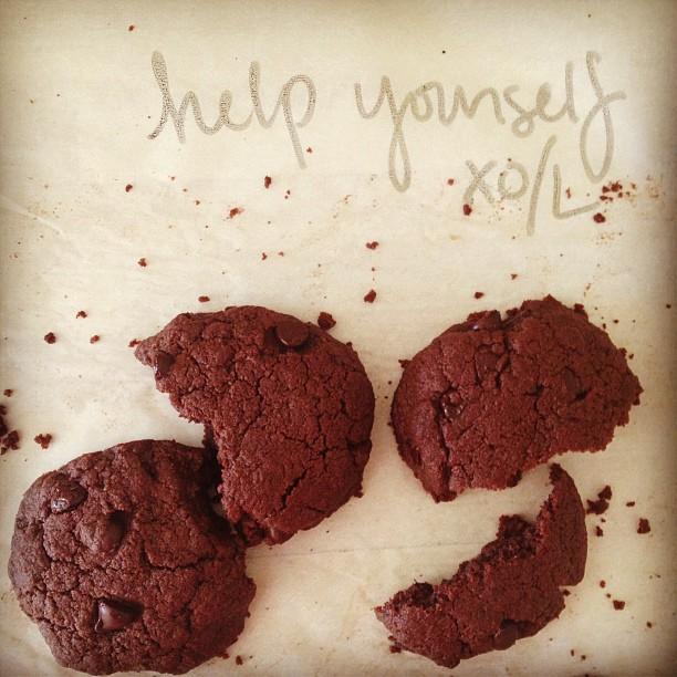 Double Dark Chocolate Peanut Butter Cookies
