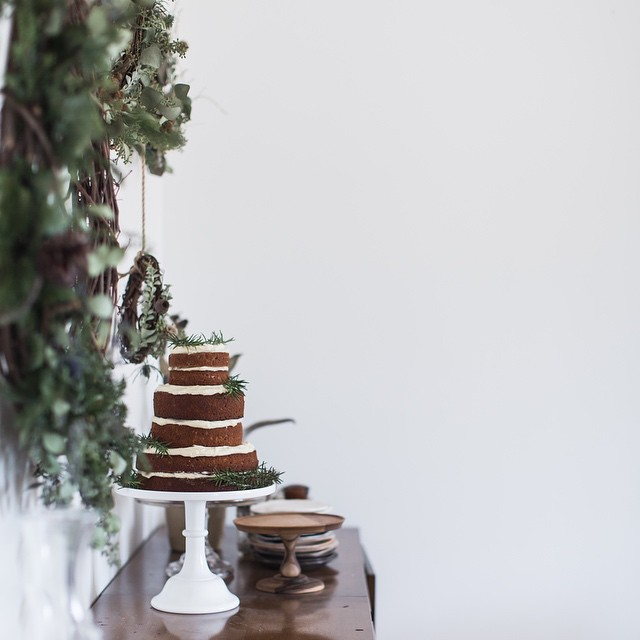 Sorghum Gingerbread Cake With Cream Cheese Frosting