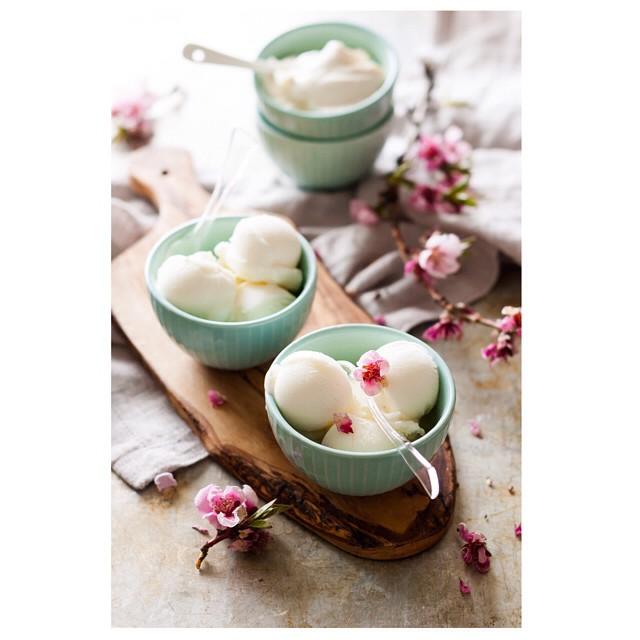 Plain Tart Frozen Yogurt