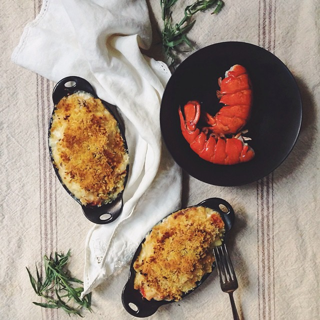 Mac N' Cheese With Lobster And Tarragon
