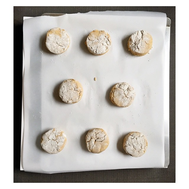 Because every Friday should start with gluten free & vegan Sweet Potato Biscuits. Period.