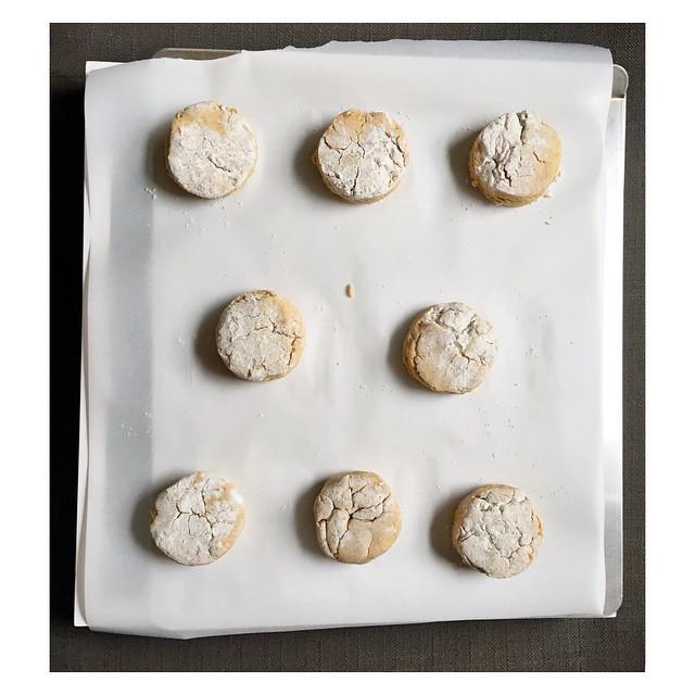 Gluten-free & Vegan Sweet Potato Biscuits