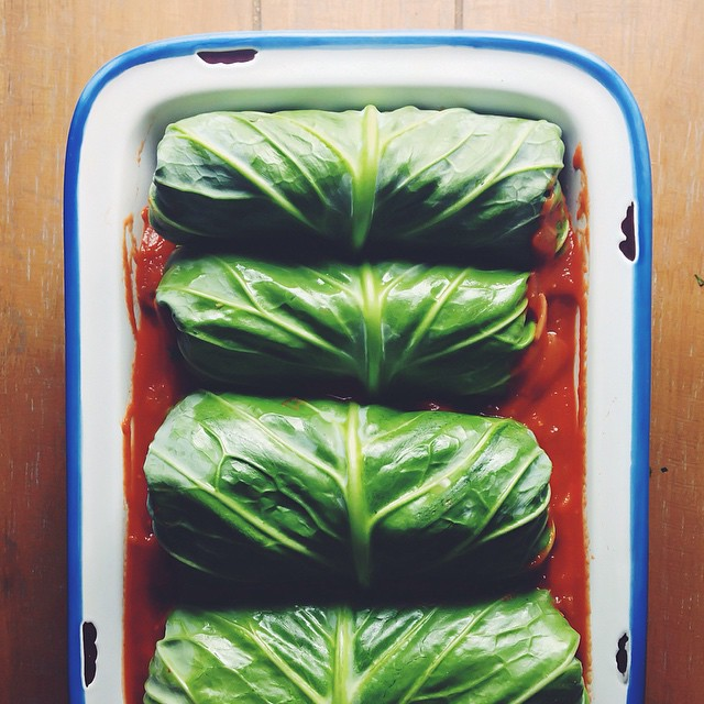 Turkey, Quinoa & Cranberry-stuffed Cabbage Rolls