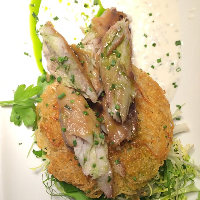 Grandma Weiner's Poatoto Latkes With House Smoked Bluefish, Goat Yogurt, And Dill