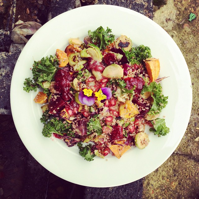 Chia Cranberry Salad With Kale, Brussel Spouts, Quinoa & Pomegranate Seeds