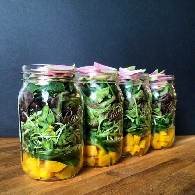 May the layers ever be in your favor. +golden beets + cucumber + microgreens + red leaf lettuce +…