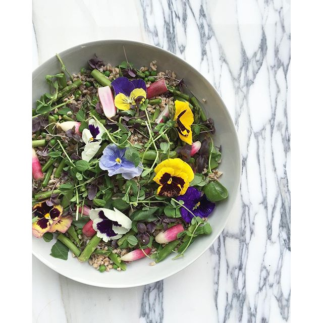 An edible love letter to spring...