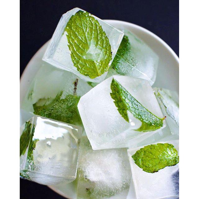 Frozen Mint Leaf Ice Cubes