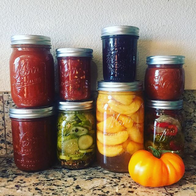 Crazy canning week 2016 is in the books! Tomato sauce, peaches, pizza sauce, pickles, jam, enchilada…