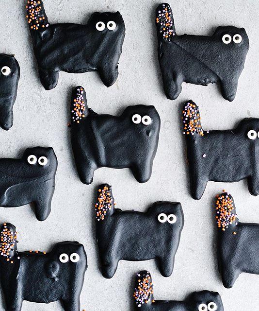 Chocolate Black Cat Halloween Cookies