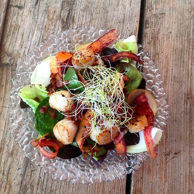 Seared Scallop Salad With Bacon Crisps And Mango Salsa