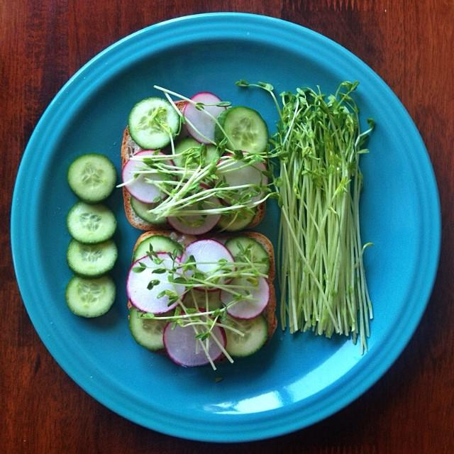White Bean Mash, Radish, Cucumber & Pea Shoot On Gluten Free Bread