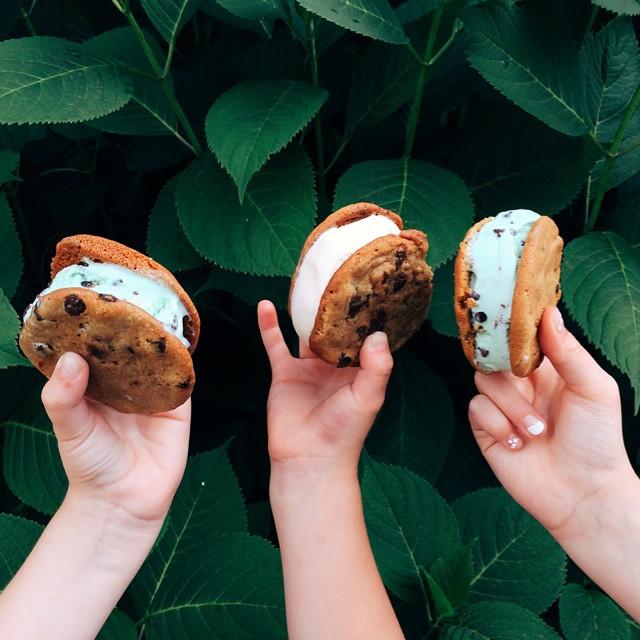 Multi-flavor Ice Cream Sandwiches