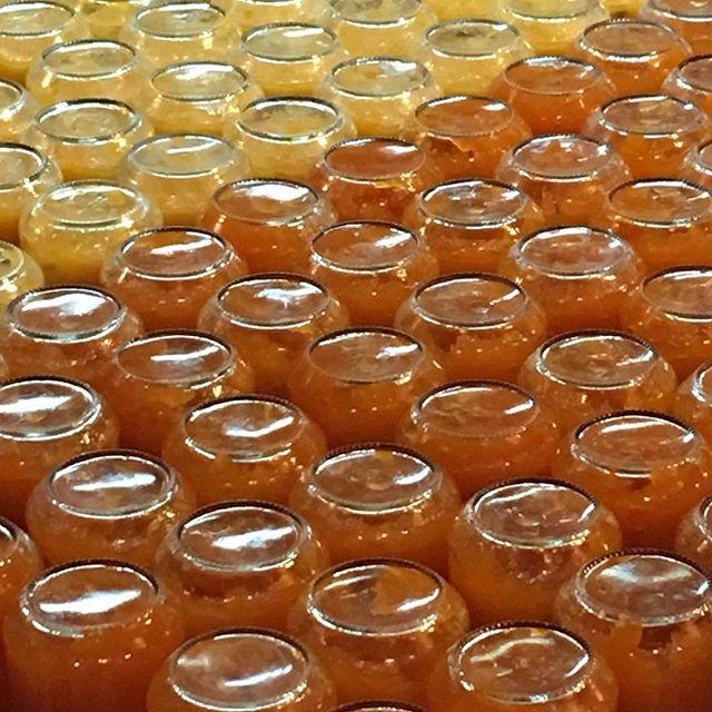 Mandarin And Grapefruit Marmalade