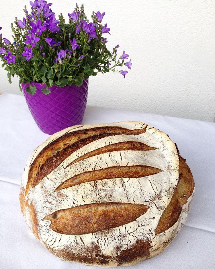 Oyster Shell Sourdough Bread