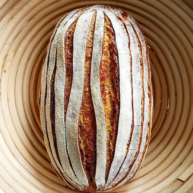 And the baked smallish batard, love those lines. For precise scoring here's a few tips: the dough…