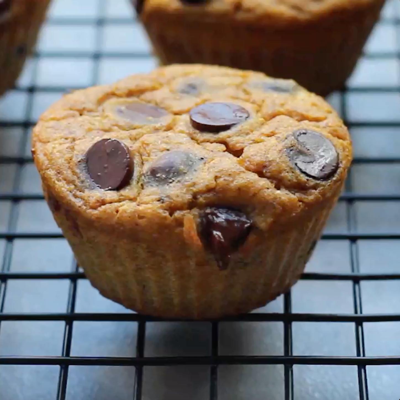 Chocolate Chip Pumpkin Protein Muffins