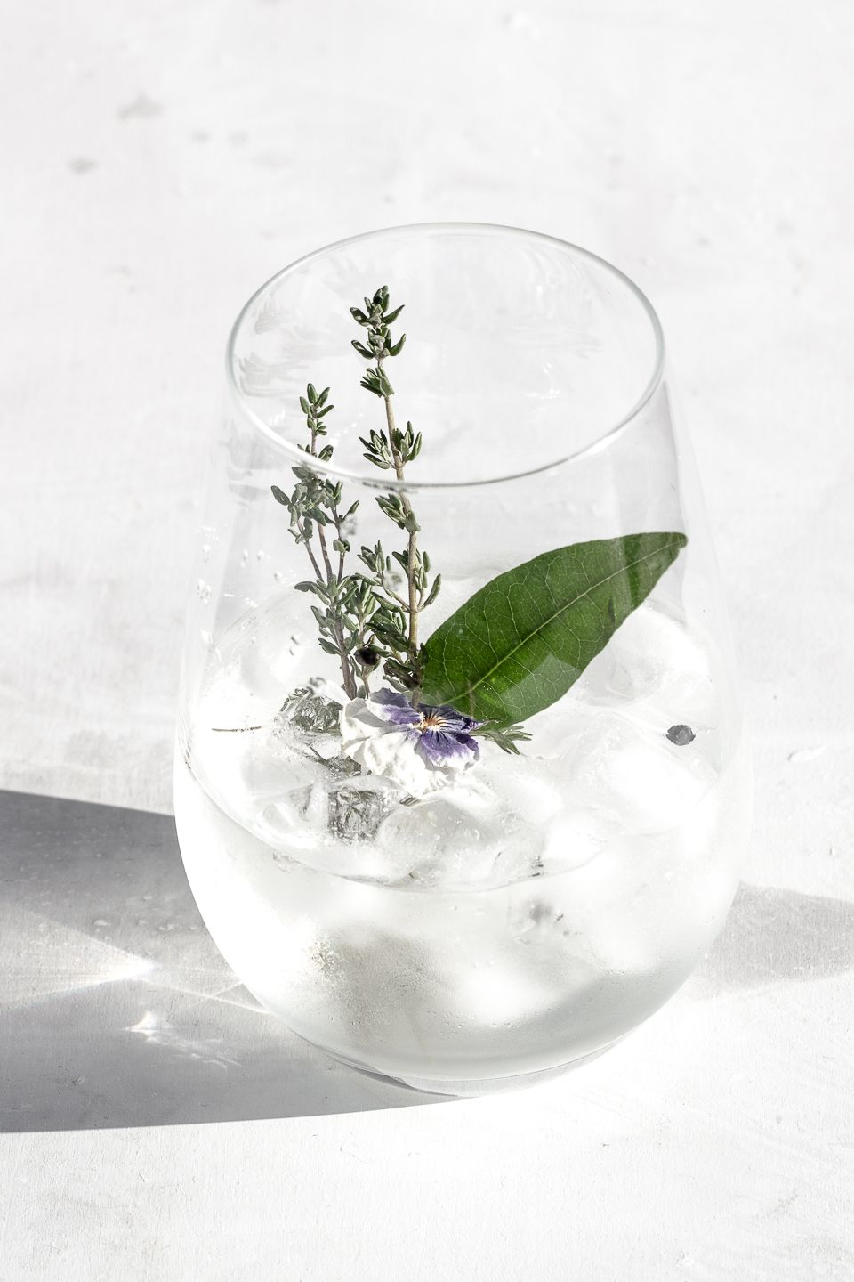 Herby Gin and Tonic