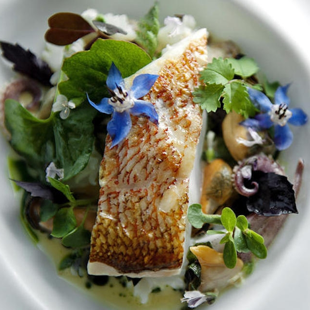 Eric Hodge's Vermillion Rockfish With Santa Barbara Mussels And Squid