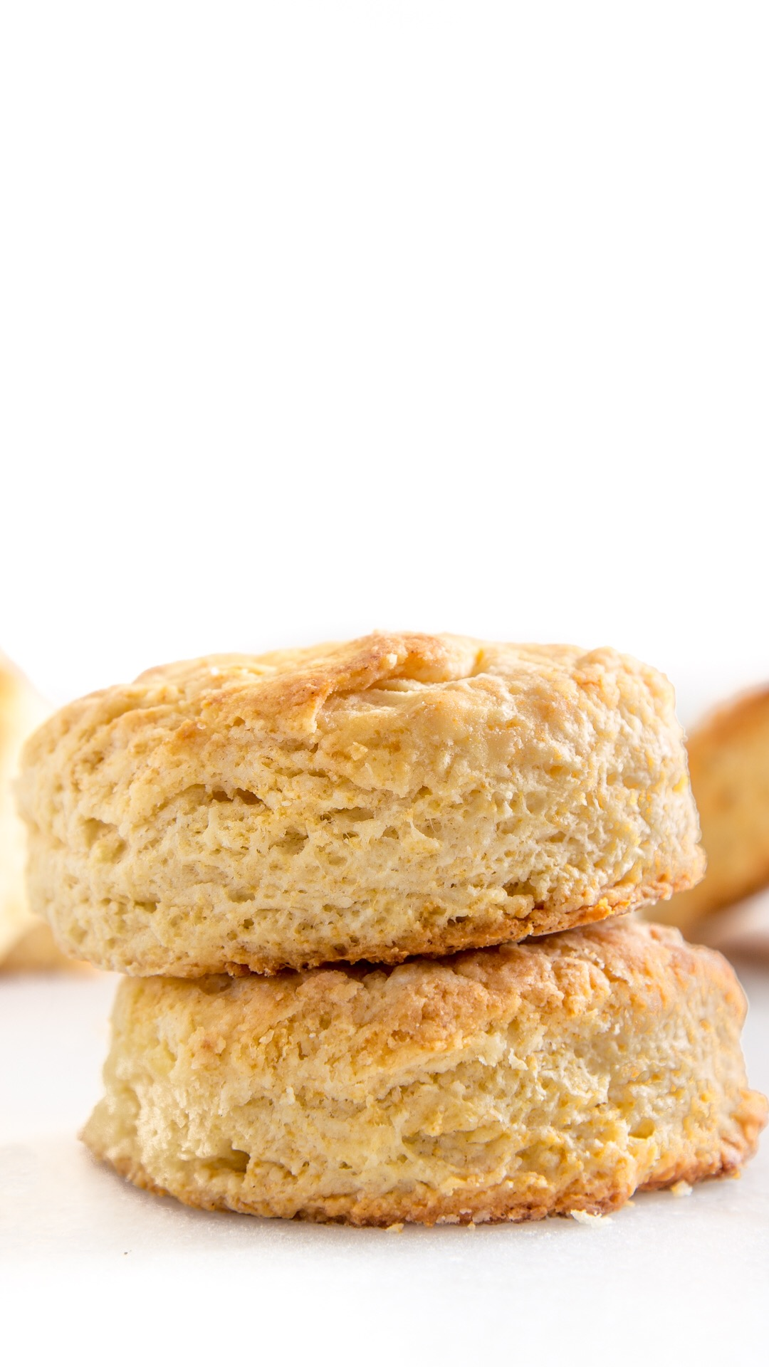 Homemade Biscuits 101