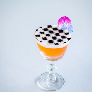Aurora Spring Activated Charcoal Checkerboard Cocktail